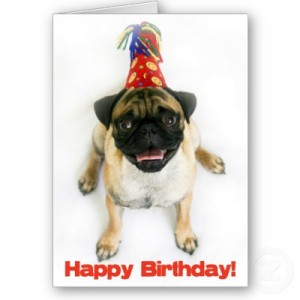 Happy Birthday Dear Simon Pegg! From The Birthday Pug