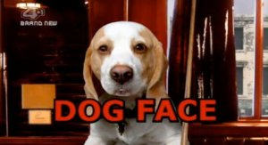 Dog Face had 5 Episodes back in 2007