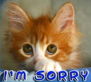 Sorry! I'm English....!