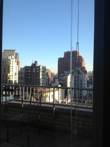 My view in TriBeCa