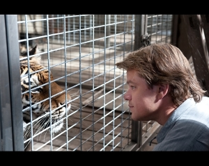 Matt Damon talk to a tiger in We Bought A Zoo